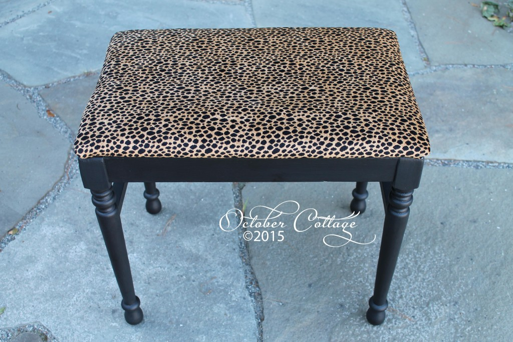 Leopard bench IMG_1674